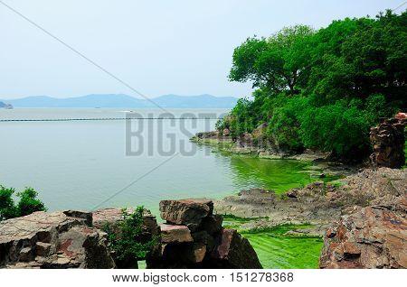 The rocky coast line of Taihu or Lake Tai scenic area in Wuxi China in Jiangsu province with an algae bloom near shore.