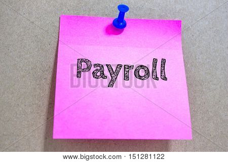 Text Payroll on pink paper note / business concept