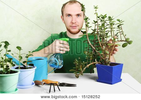 Man Sitting Near Table With Gardening Equipment And Sprinkling Crassula Plant