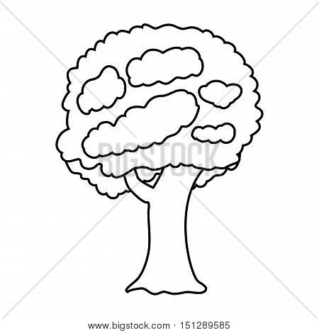 tree with leaves and trunk vector illustration