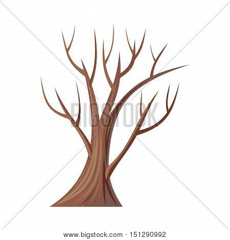 Vector tree. Oak isolated on white. Bare tree without leaves. Oak is a tree or shrub in the genus Quercus of the beech family, Fagaceae. Oakley. Vector illustration
