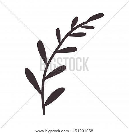 silhouette stems with few leaves vector illustration