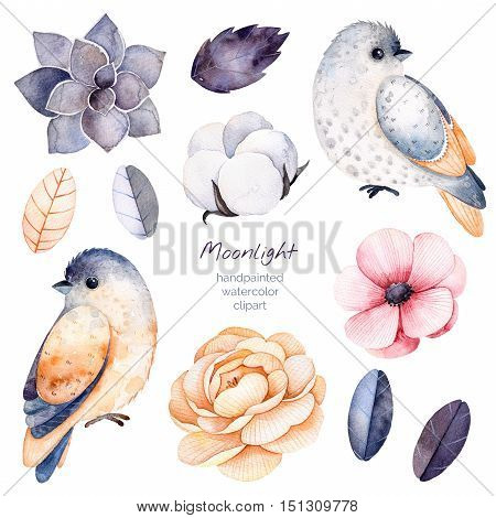 Beautiful winter collection with branches,cotton plants,flowers,little bird,colorful leaves,succulent.
