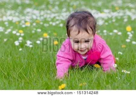 Cute chubby toddler crawling on the grass exploring nature outdoors in the park