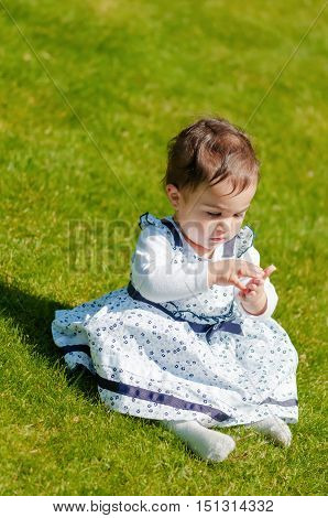 Cute chubby toddler looking at dandelion seeds curiously exploring nature outdoors in the park