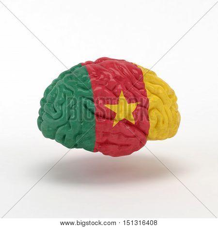 Cameroon. Flag on Human brain. 3D illustration.