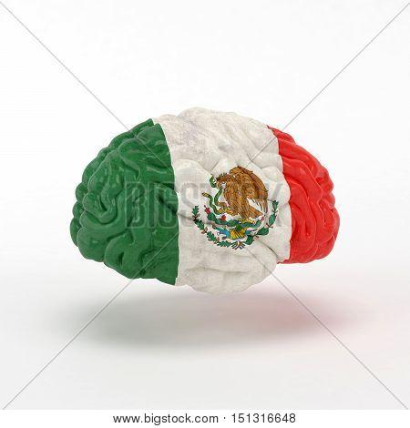 Mexico. Flag on Human brain. 3D illustration.
