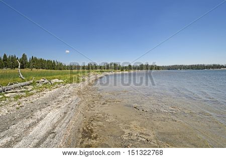 Remote Shore on a Wilderness Lake on Lewis Lake in Yellowstone National Park in Wyoming