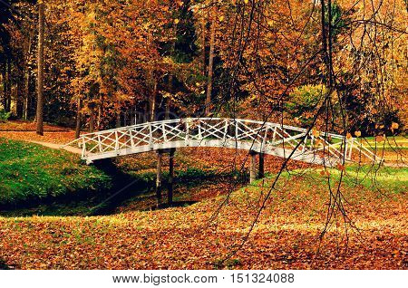 Autumn landscape- white wooden bridge in the autumn park among the yellowed autumn trees and fallen autumn leaves. Autumn park landscape colorful autumn view. Autumn landscape in October- autumn view
