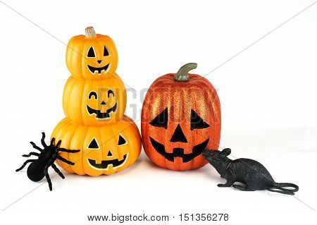 Halloween pumpkin lantern, spider and rat isolated on white background