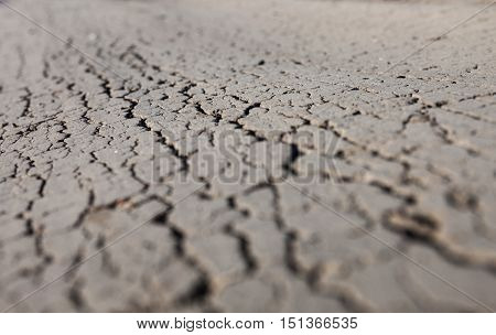 Cracked dry ground with rich and various texture