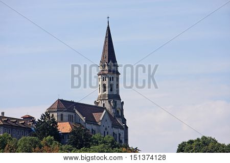 Basilica of the Visitation in Annecy, France