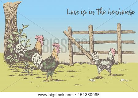 Greeting card. Love is in the henhouse. Two roosters looking at the hen in the farm. Countryside. Beautiful nature, tree with leaves, next to the fence.