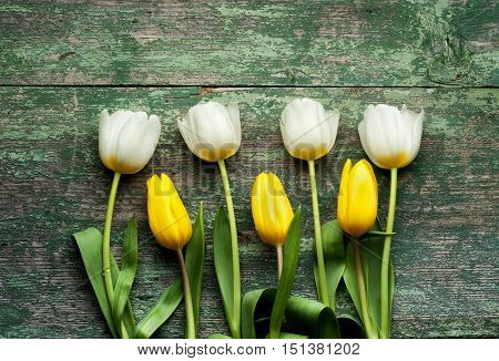 Beautiful yellow tulips on wooden background. Top view, copy space.