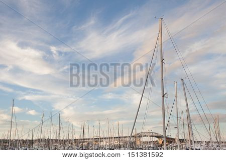 Boats mooring with Auckland harbor bridge background in Auckland New Zealand.