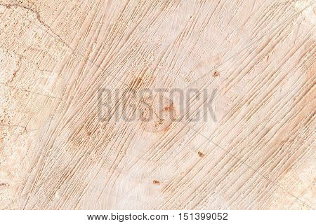 Wooden background annual rings rough texture closeup