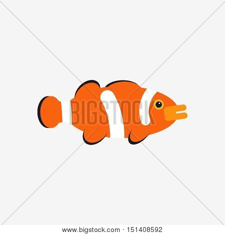 Vector illustration of tropical aquarium clown fish or anemone fish isolated on white background in flat style