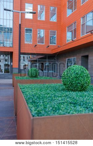 Modern business center with decorative flowerpots in front of entrance