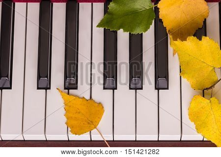 Autumn Leaves The Keys On Piano