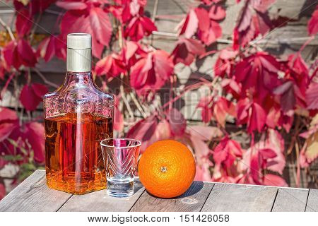 Bottle of tequila with a shot and the orange on the old table in autumn garden's