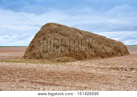 Agricultural field after harvest. Huge haystack at the background earth field and storm cloudy sky.