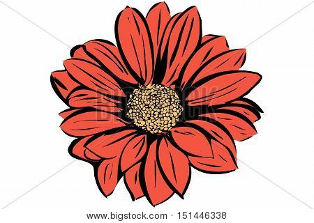 vector image of a beautiful blooming flower garden