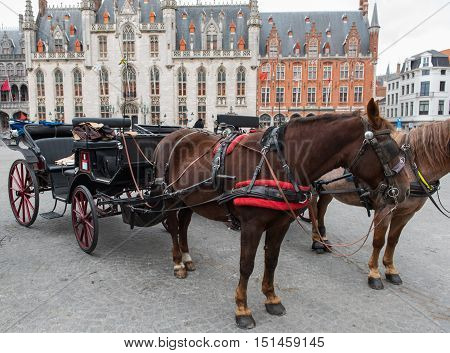 horse carriage in front of thr Brugge city hall