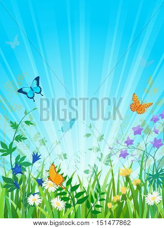 Summer meadow scene with sun rays. Vector contains opacity masks and transparency objects. EPS 10.