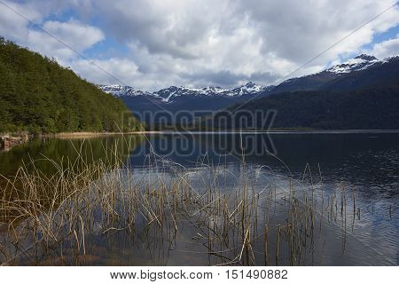 Scenic lake (Laguna de las Torres) surrounded by snow capped mountains located along the Carretera Austral in the Aysen Region of southern Chile.