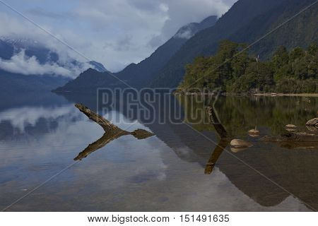 Dead tree trunk lying partially submerged in the calm waters of Lake Rosselot located along the Carretera Austral  in the Aysen Region of southern Chile.