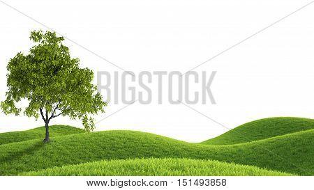 Perfect summer green grass field. 3D rendering