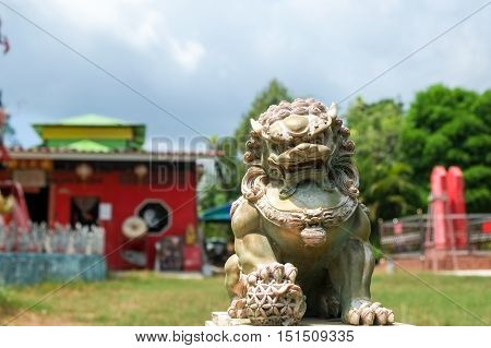 The lion statue at local chinese shrine in phuket province Thailand