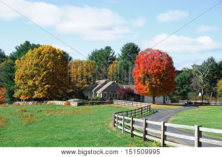 autumn farm with colorful trees and winding driveway
