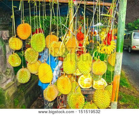 The roadside shop with durians at Bali Indonesia