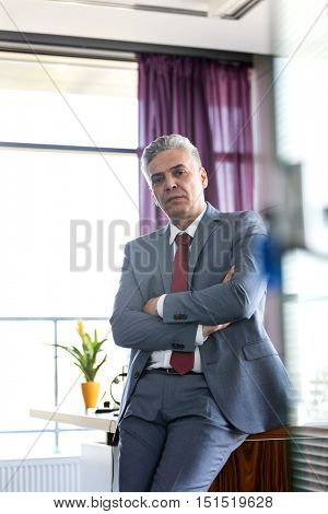 Serious mature businessman talking on mobile phone in office- Corporate Business