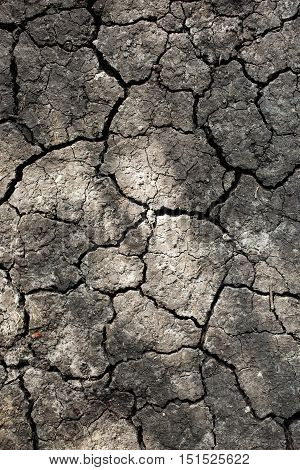 Close up of dry cracked earth. Drought land background.