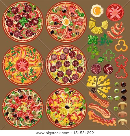 Set of different pizza ingredients. Six types of pizza. Set of vector pizza and ingredients for making new ones.