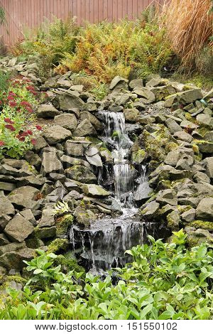 waterfall in the park with green leaves and partly sear fern around it in autumn