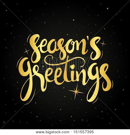 Seasons greetings golden handwritten lettering. Modern vector hand drawn calligraphy over starry night background for your greeting card design