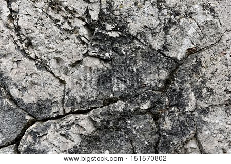Closeup Of A Cracked Limestone Surface