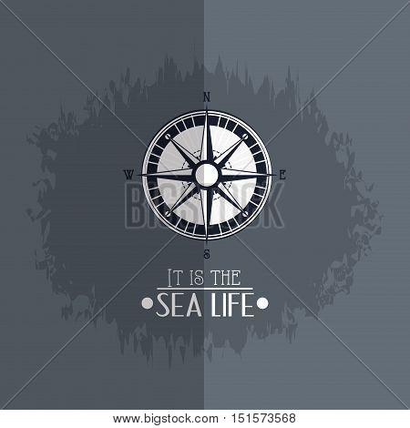 compass with nautical sea life related icons image vector illustration design
