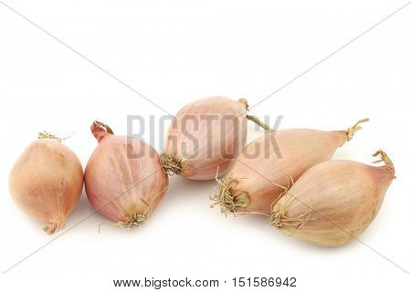 Dutch shallots on a white background