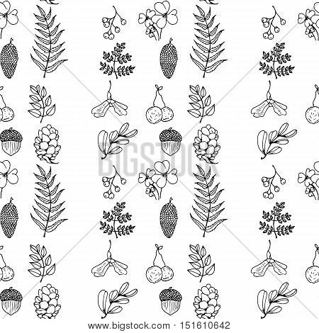 Nature Illustration. Natural Materials. Forest Postcard. Forest Fruits, Leaves, Branches. Black And
