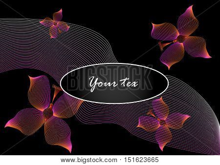 Vector pink butterfly of life lines on black background vector