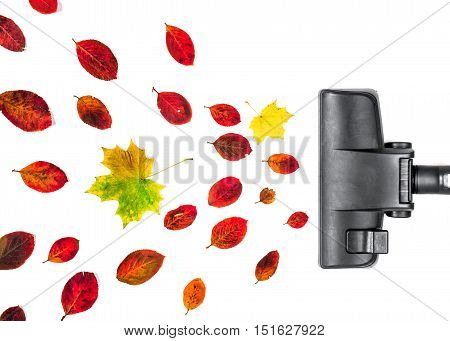 vacuum cleaner engulf autumn leaves on isolated white background.