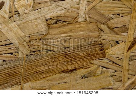 Texture chipboard. Pressed wood. Close-up. Horizontal photo.
