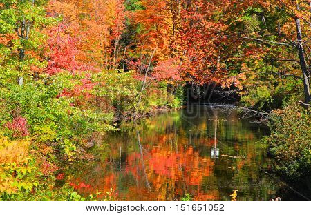 Small pond in Vermont  New England in autumn time