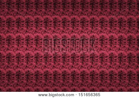 Red blackberry fruit texture. Abstract texture made of berrys