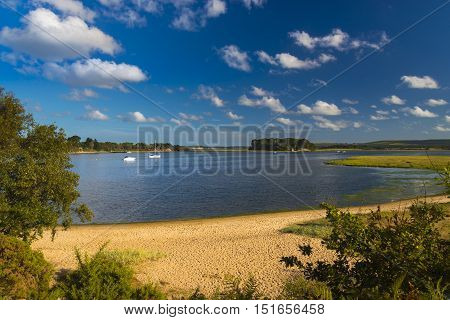 Golden sands border the Arne Heathland Dorset with views across the harbour waters to the islands of Brownsea Furzey Green Long and Round