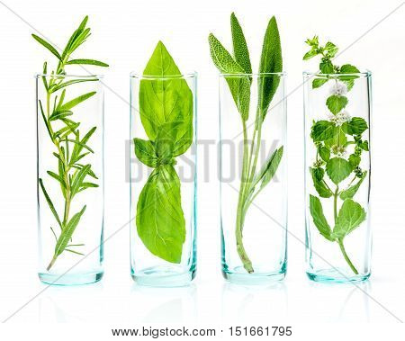 Close Up Bottles Of Essential Oils With Fresh Herbs . Sage, Rosemary, Sweet Basil Leaves And Pepperm